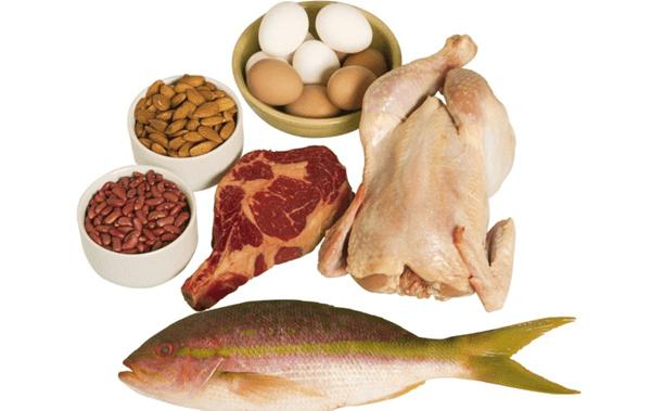 cung cap protein cho cac bua an
