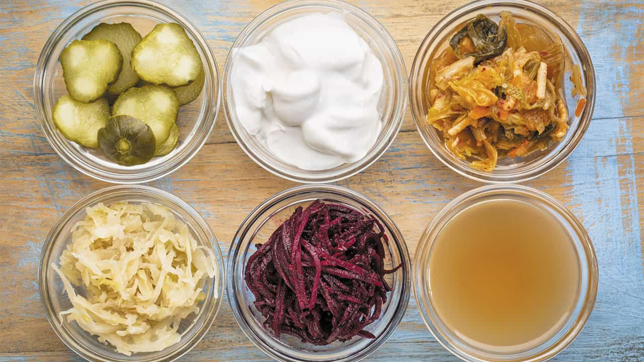 Sữa chua, dưa cải, kim chi là những thực phẩm chứa nhiều vi khuẩn Probiotic